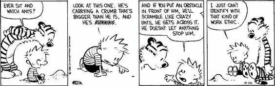 calvin and hobbes - work ethic